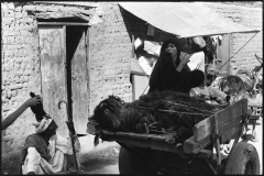 egypt_1981_cairo_004